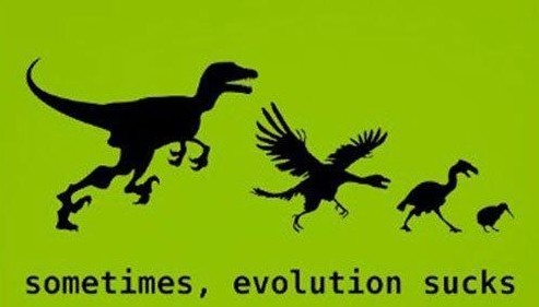 evolution sucks